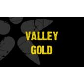 Valley Gold - 20 Litre Bag in a Box - Pure North Cider Press